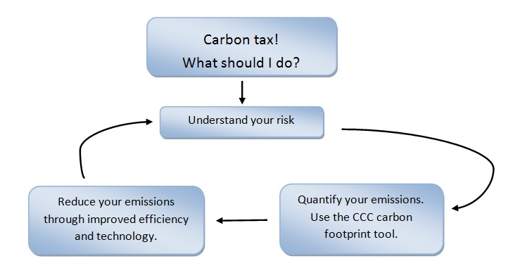 Carbon Tax Figure