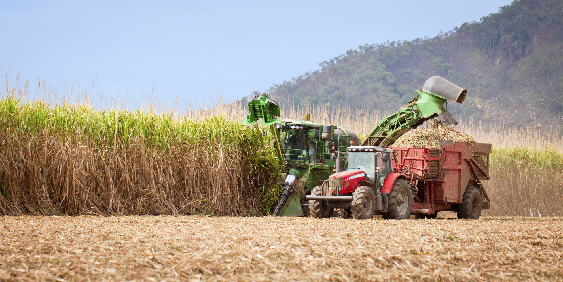 Monoculture farming driven by the use of fossil fuels