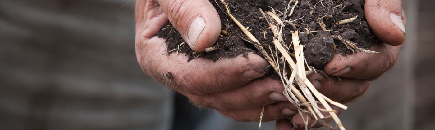 Soils-Hands